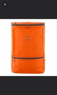 DELSEY Miromesnil Back Pack