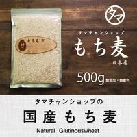 微型微型toshita口感和膳食纖維年糕麥子500g(國產、不添加.29年度生產)motchiri豐富! 在高蛋白質,高礦物質,用β-葡聚糖這個膳食纖維與白米相比較超過20倍!  國產年糕麥子遺傳基因組換enashimochimugimochi麥子國產年糕麥子飯麥子飯 tamachan shop
