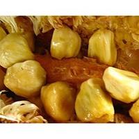 黃果榴槤蜜/水果苗/榴槤蜜品種/嫁接苗