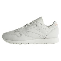 Reebok Classic Leather White Artificial Suede BS6591