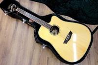 大鼻子樂器 原廠公司貨 Washburn WD25SCE 高階木吉他 缺角EQ