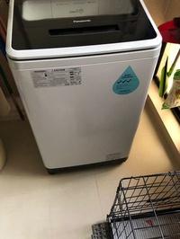 Washing Machine Panasonic