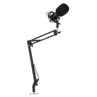 BM800 Condenser Microphone Network Anchor for Karaoke Computer Stage KTV