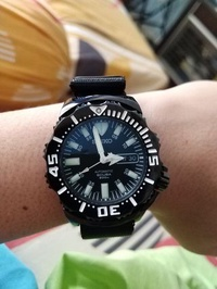 Seiko Night Monster(SZEN002)