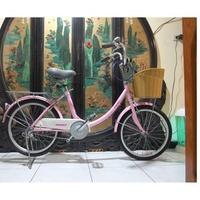 20吋捷安特GIANT粉紅色(t205)低跨點淑女腳踏車.適合身高135至150之間騎乘.