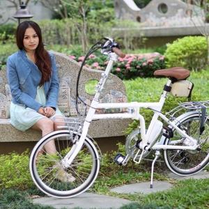 ZEPHYR澤橋 折疊電動輔助自行車FD20-F