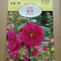 種子王國 蜀葵【花卉種子】天星牌 小包裝種子
