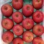 日本青森蜜蘋果日本直送品質保證,28顆約10公斤