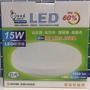 {TOM} 電精靈 LED 15W 防塵防水吸頂燈 (全電壓:100~240V )
