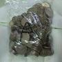 60年代大1元錢幣硬幣