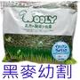 日本Wooly 黑麥草(幼割) 350g