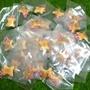 小熊餅乾吊飾❤ 小熊餅乾 無尾熊 吊飾 可愛 卡通 玩具 遊戲 出清 鑰匙圈 正版 日本 樂天 餅乾 零食 q版 療愈