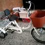 日式三輪車,親子三輪車,三輪腳踏車,老人三輪車,捷安特,美利達,變速車,折疊車