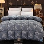 現貨保暖毛毯被 被芯 被胎加厚6斤8斤10斤羽絲絨被子冬被春秋被保暖棉被單雙人200x230被芯