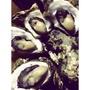 澎湖鮮蚵煌-澎湖新鮮牡蠣(帶殼)