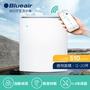 瑞典Blueair 12-20坪 抗PM2.5過敏原經典i系列清淨機 480i