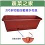 【蔬菜之家005-AP60】2尺多功能自動澆水花盆(含底盤)