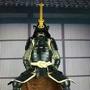名家99 日本武士名將大名等身1:1盔甲訂製2