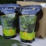 【翠活CheerLife】植物工廠高品質安全無毒水耕蔬菜禮盒(3種綜合生菜)(1kg裝)