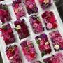 綜合食用花 / 2盒 250