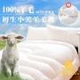 【JAROI】台灣製100%初生小羔羊毛被3KG保暖型(送舒眠枕1入)