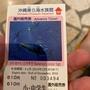 沖繩 美麗海 海洋館 黑潮 100含運 水族館