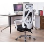 FUTURE LAB Ergonomic Massage Office chair and Gaming chair