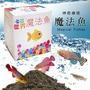 [現貨] 魔法魚 療癒小物 土壤 魚卵 魚水共生 魔法魚 灌溉 觀賞 景觀 小物 七彩世界魔法魚 養殖 神奇療癒魔法魚