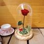 《預購》美女與野獸系列-玻璃罩永生玫瑰花