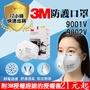 【現貨秒出👉🏻附3M授權單】3M口罩n95口罩9001V 9502V/防PM2.5霧霾 眼鏡不起霧 冷流呼吸閥