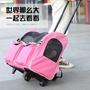 Sweetie-Petty 寵物外出拉桿箱 網格透氣貓咪狗狗外出便攜式行李箱 帶滑輪寵物箱