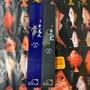 天秤專用 西遊蝦竿 齊天大聖蝦竿 牛魔王蝦竿 士貿 西遊系列 超硬調 極硬調 蝦竿 5/6/7 3zoom 搭直桿萬轉