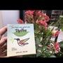 [補貨中]越南🇻🇳減肥茶🍃Vy&Tea🍃 HAVYCO 15入/1盒30g