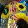 鄭美香 海鹽茴香葵瓜子 3000克 袋裝 瓜子 香瓜子 海鹽茴香