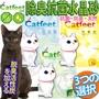 CatFeet》無粉塵除臭抗菌水晶貓砂水晶砂-5L