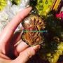 代購            古巴 阿贊磐石 潘十 一期 2550 戰神 拍嬰 泰國正品佛牌