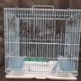 二手小型寵物籠子or二手鸚鵡專用鳥籠