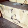 電動滑板車(1300w)(不含電池)