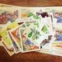 寄信郵票,6元100張,面額600,售9折540。