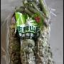 台灣生鮮山葵