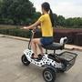 【易購】新款電動三輪車 成人電機車 20AH鋰電池 電車 家用代步 小型迷你電動車 碟剎真空輪胎 前後減震 60公里