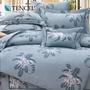 【貝兒居家寢飾生活館】60支頂級天絲銀纖維兩用被床包組(加大雙人/克萊曼)