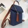 Loewe 新款Goya Small Backpack 系列後背包 真皮後背包 牛皮包包