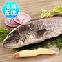 石斑魚 青斑650g 冷凍配送 [CO17060305]健康本味