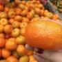 ❌賣完請勿下單 巡第二批進貨中🌼砂糖橘🌼超好吃迷你砂糖橘 口感佳 量少