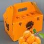 新鮮黃金柑(金棗)5斤禮盒裝