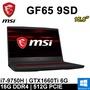 微星 GF65 9SD-002SP1 15.6