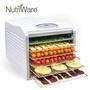 【美國熱銷款】美國 Nutriware 六層食物乾燥機 乾果機 果乾機 烘乾機 不鏽鋼層架 NFD-815D