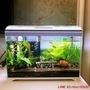 水族箱森森超白桌面小魚缸 帶蓋生態玻璃缸水族箱水草缸客廳造景金魚缸摩可美家