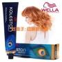 【燙染劑】 威娜 WELLA 專業護髮染膏60g 提供全系色澤選擇 全新公司貨